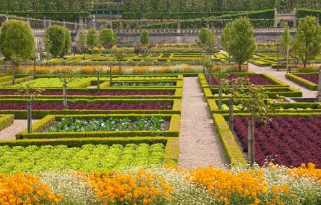 להפוך את הגינה הביתית לגן עדן: טיפים לעיצוב גינות קטנות