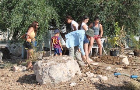 שכונת השבטים מתחדשים: גינה קהילתית לתושבי השכונה
