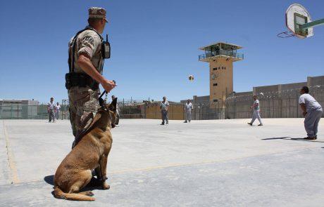 """תיקי מצ""""ח: המקרים שבהם מומלץ להתייעץ עם עו""""ד צבאי"""