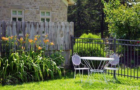 4 טיפים לתחזוקה נכונה של הגינה